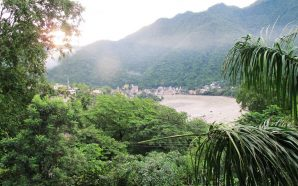 Hindistan'daki yağmur ormanları