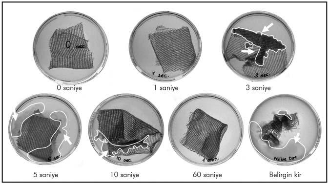 Agar besiyerlerinin beyaz ışık altında çekilmiş fotoğrafları
