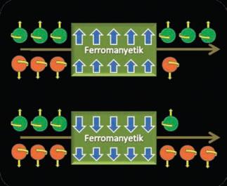 Ferromanyetik bir maddeden aşağı ve yukarı spinli elek