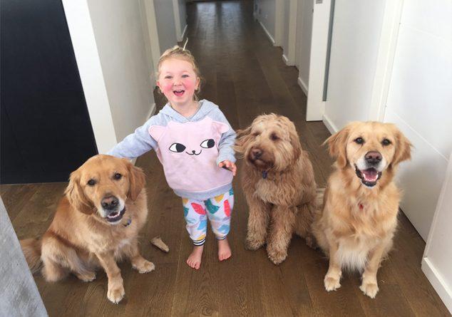 Çocuğunuzun köpek korkusunu yenmesi için öneriler
