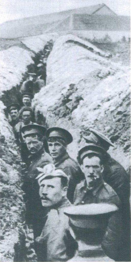 2014 Tüyler Ürpertircesine 1914'e Benziyor