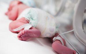 Hamilelikte erken doğum