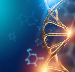 Genetik üzerine