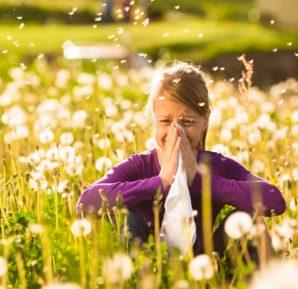 Sonbaharın gelişiyle alerji
