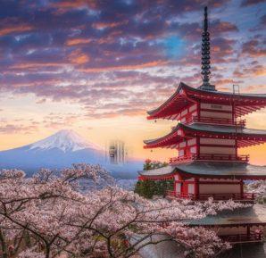 Didem Japonya'da