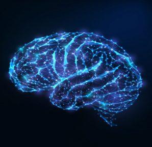 Bilişsel Bilim Nedir