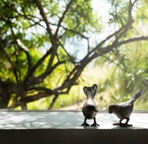 kuşlar cam kenarında