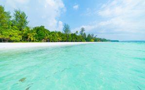 Yeryüzündeki Cennet Bahçesi: Bahamalar